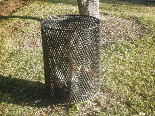 Trash_Can_in_Park